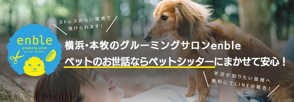 横浜・本牧のグルーミングサロン アンブルでは、安心のペットシッターはじめました!